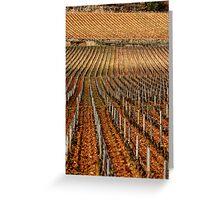 Vineyard vertical. Greeting Card
