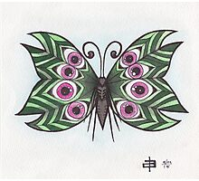 Butterfly Study - Eyeball Wings Photographic Print