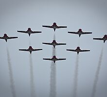 The Snowbirds by Daphne Johnson