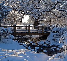 Snowy Bridge by Mark Van Scyoc