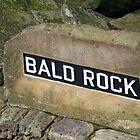Bald Rock by Wanda Raines