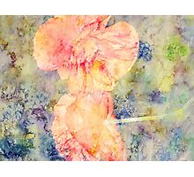 Painting Poppies Photographic Print