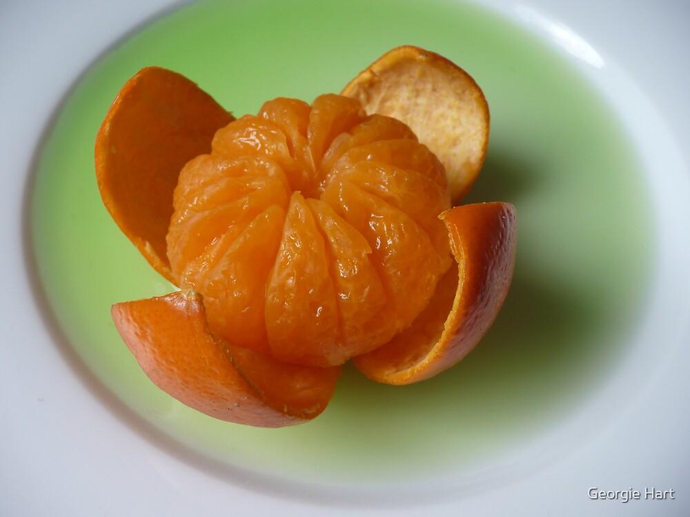 Mandarine Bloom by Georgie Hart