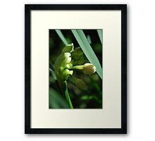 Love is Times Most Precious Gift Framed Print