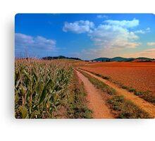 Hiking trail into beautiful scenery II | landscape photography Canvas Print
