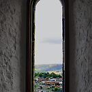 window with a view by Carol  Lewsley