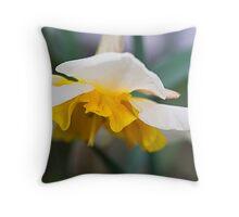 Springtime... Throw Pillow