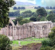 Bolton Priory by John Thurgood