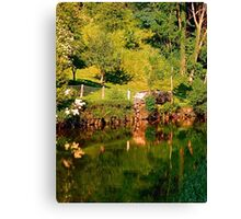Green life, a river and reflections | waterscape photography Canvas Print