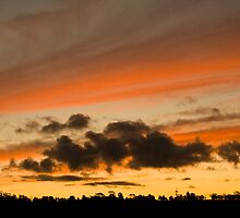 Sunset from Rosevears Vineyard by nealbrey