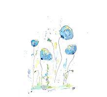 Watercolor Poppy Photographic Print