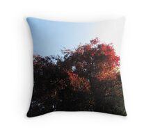 Natural Colour Throw Pillow