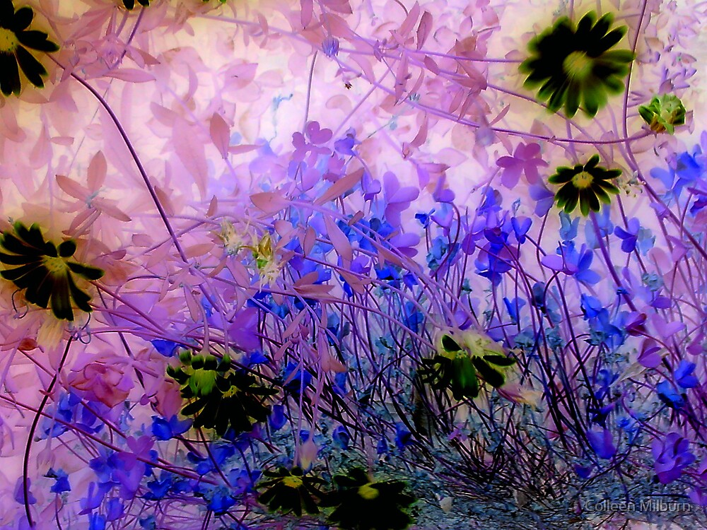 Life in the undergrowth by Colleen Milburn