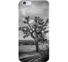 AV Joshua Tree iPhone Case/Skin