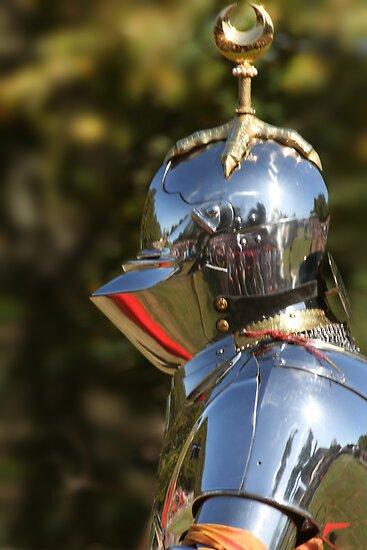 George Boleyn, Knight of the Moon by Wayne Gerard Trotman