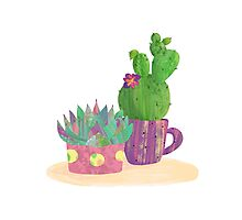 Simple Cactus Collection Photographic Print