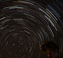 Star Trail  by sully30
