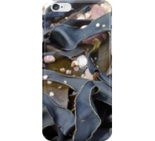 Sidmouth Seaweed iPhone Case/Skin