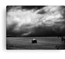 """""""The clouds are coming, the clouds are coming...RUN!"""" Canvas Print"""