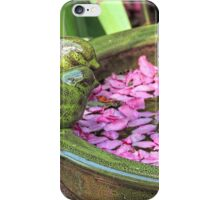 Spring Fall of Blossoms iPhone Case/Skin