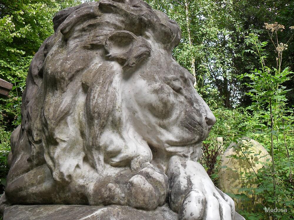 Leo: The Lion Heart by Medusa