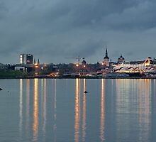 View of Tallinn from the sea by Eduard Gorobets