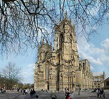 The Minster, York by neilk