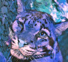 clouded leopard by HoodedYouth