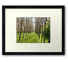 ..And It Goes On...and on..... ~For Trueblvr~ Framed Print