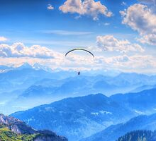 gliding high by Susan Dost
