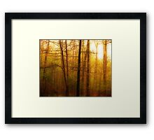 Its A Brand New Day Framed Print