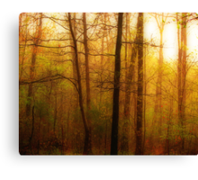 Its A Brand New Day Canvas Print
