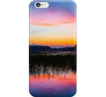 A Palette of Colors iPhone Case/Skin