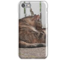 West Philadelphia catitude iPhone Case/Skin
