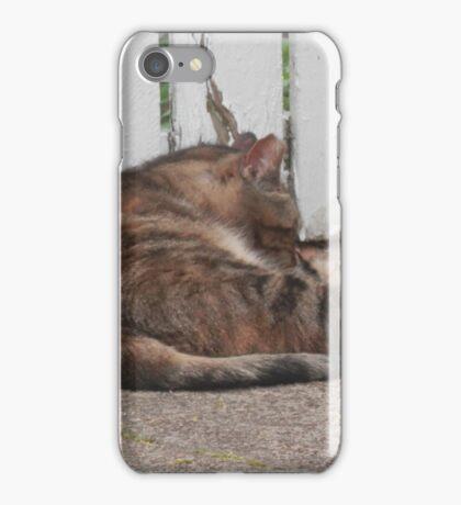 West Philadelphia catitude iPhone Case/Skin