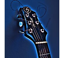 cold blooded acoustics Photographic Print