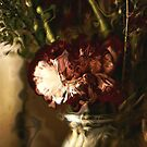 The Carnation by Kathy Nairn