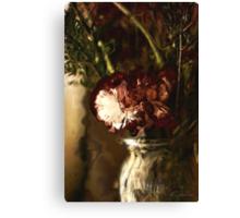 The Carnation Canvas Print