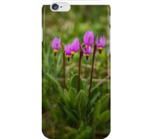 Shooting Stars in the Bear Paw Mountains iPhone Case/Skin