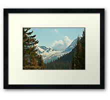 Mountain Pines Framed Print
