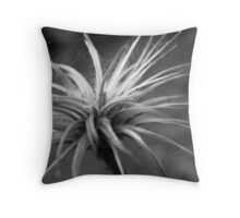 Poof Together.  Throw Pillow