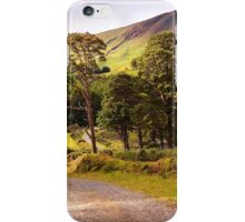 Celtic Spirit. Wicklow Mountains. Ireland iPhone Case/Skin
