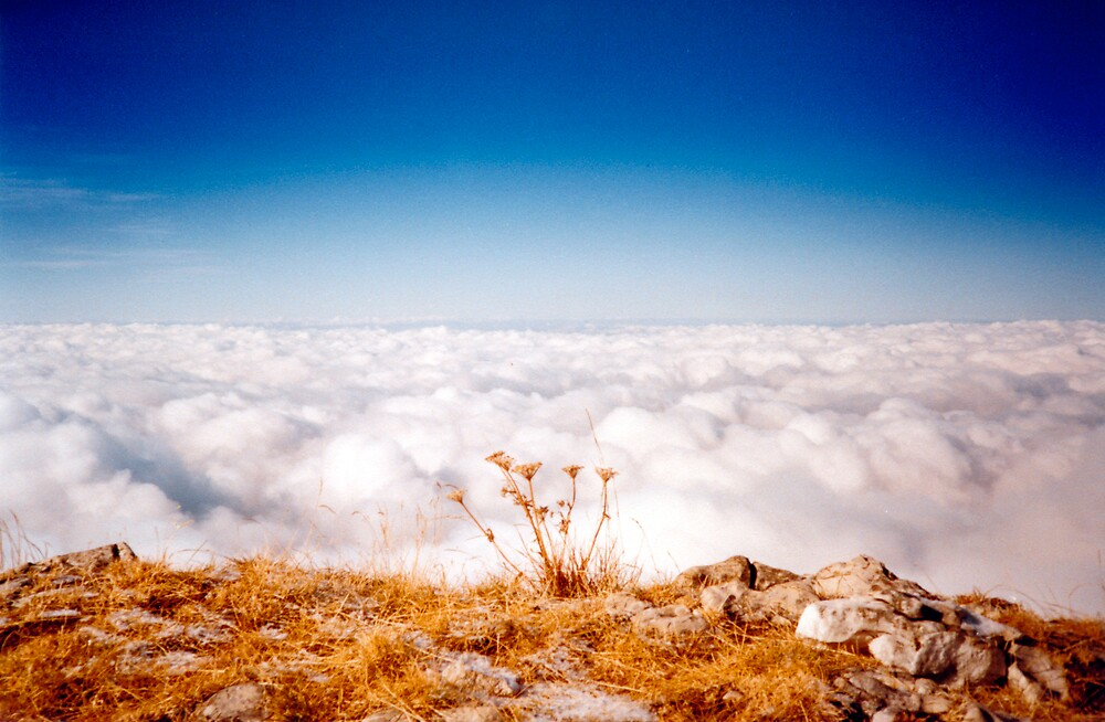 Sea Of Clouds by Pascal and Isabella Inard