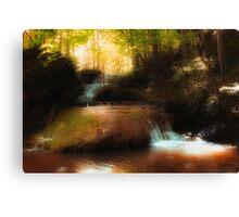 Falls Ridge Preserve, VA - 3 Canvas Print