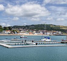 Pontoons At Lyme Regis Harbour by Susie Peek