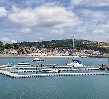 Pontoons At Lyme Regis Harbour by Susie Peek