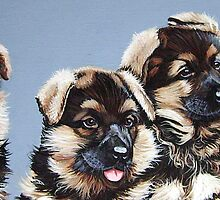 Puppies to the power of four. by Robert David Gellion