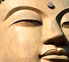 Face of Buddha - Seoraksan National Park, South Korea by Alex Zuccarelli