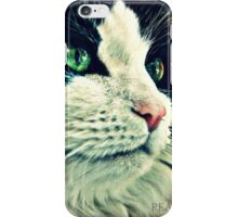 A Pretty Kitty  iPhone Case/Skin