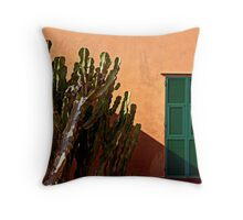 The cactus and the shutters Throw Pillow